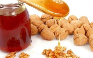 Мед и грецкие орехи для потенции — рецепт с сохранением полезных свойств