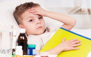 Респираторный микоплазмоз: симптомы, лечение