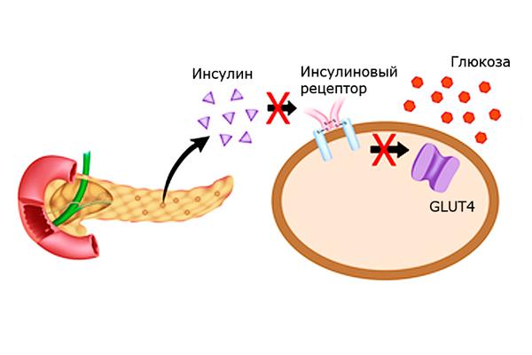 Народные средства от молочницы: растворы для спринцевания, лечебные тампоны, примочки