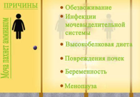 Неприятный запах мочи у женщин - причины возникновения, лечение