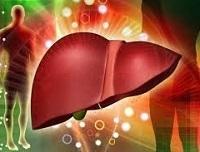 Носитель гепатита В - что это значит для здоровья