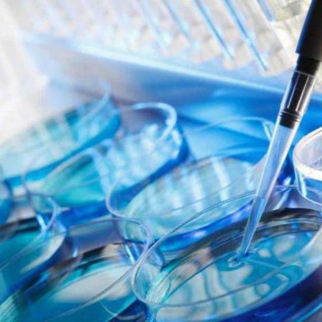 Серологические реакции на сифилис — обзор анализов