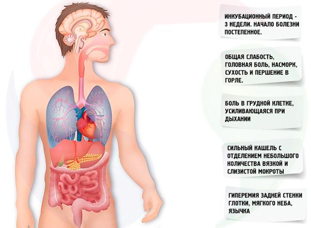 Внутренний герпес - особенности симптомов и лечения