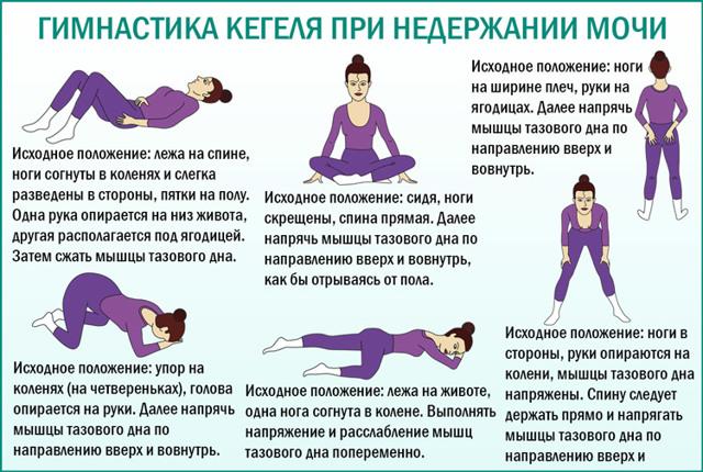 Гимнастика Кегеля при недержании мочи и другие упражнения для женщин и мужчин