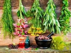 Лечение бесплодия народными средствами - травами, семенами