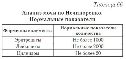 Анализ мочи по Нечипоренко - правила сбора и расшифровка результатов