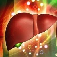 Гепатит С после лечения, что делать дальше
