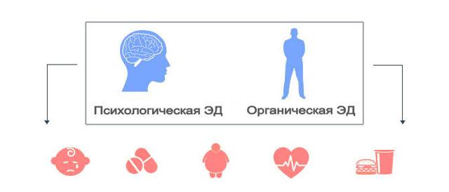 Эректильная дисфункция - что это такое, причины и лечение