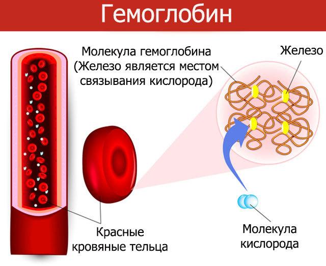 Гемоглобин в моче - что это значит, какие причины появления?