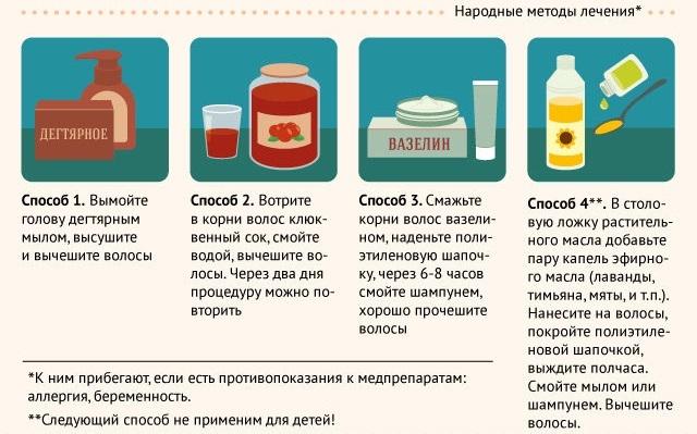 Педикулез - лечение эффективными средствами в домашних условиях