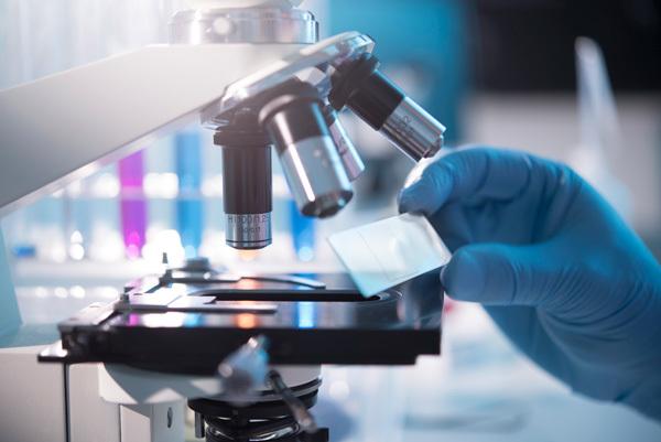 Микрореакция на сифилис (МР, МРП) — что это за анализ, когда назначается?