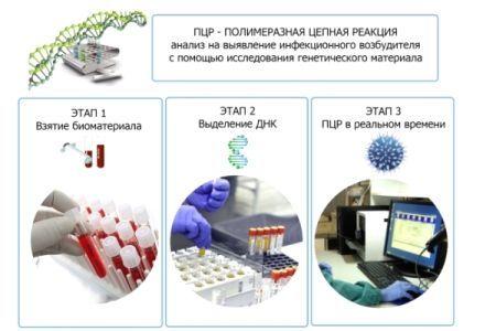 Кровь на сифилис — откуда берут при различных анализах?