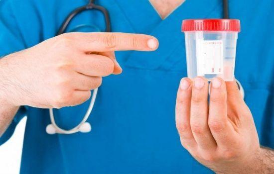 Амилаза мочи - норма, причины повышения у взрослых и методы лечения