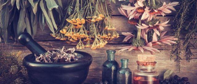 Как лечить гепатит с в домашних условиях: отвары, травы, настойки