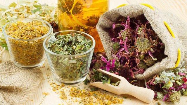 Самые эффективные травы от простатита: пижма, шалфей, подорожник, пион, крапива