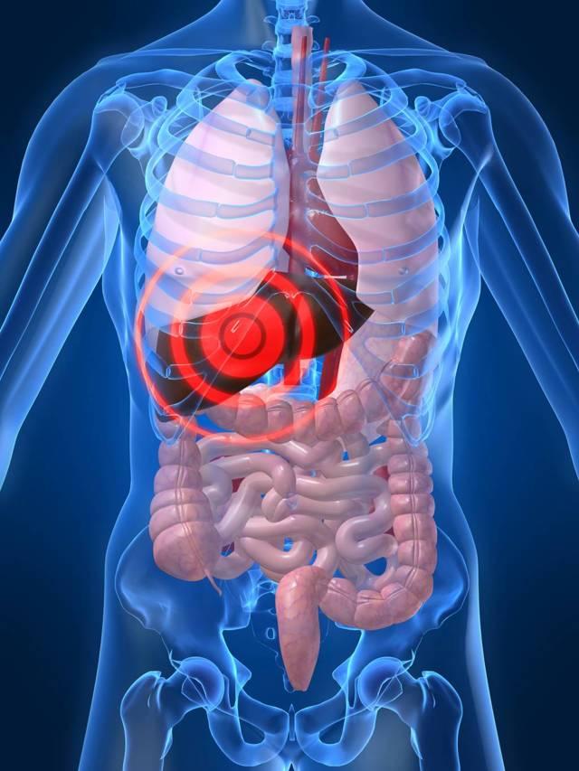 Дифференциальная диагностика вирусных гепатитов, основные методы исследования