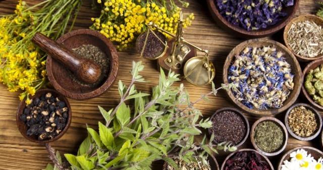 Гепатит В, лечение народными средствами - травяные сборы, отвары