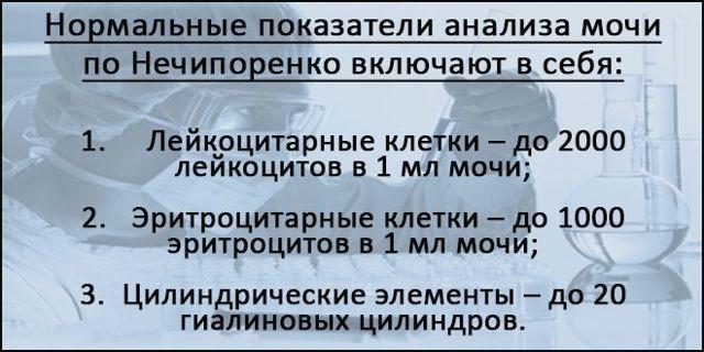 Анализ мочи по Нечипоренко у детей - норма и возможные отклонения