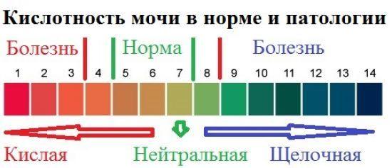 ph мочи - норма, повышенная и пониженная кислотность