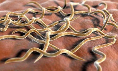 Скрытый сифилис — как выявить симптомы, какое лечение выбрать?