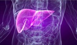 Хронический гепатит В и С с исходом в цирроз